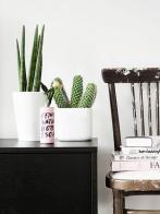 cacto-em-móvel-com-cadeira-decorativa