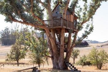 Casa-na-árvore-alta