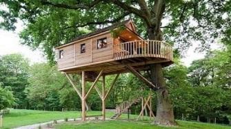 Casa-na-árvore-com-escada-circulando-a-árvore