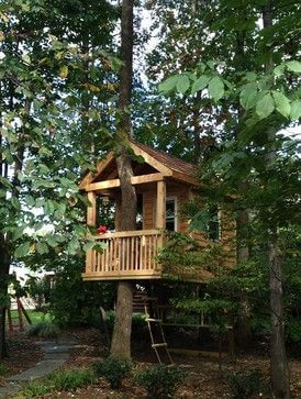 Casa-na-árvore-com-escada-mole