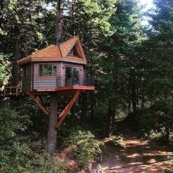 Casa-na-árvore-com-ponte-1