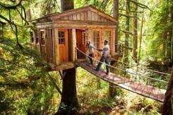 Casa-na-árvore-com-ponte-2