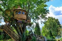 Casa-na-árvore-grande