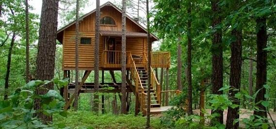 Casa-na-árvore
