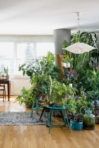 urban-jungle-book-interior-ideas-styling-plants-800x1200